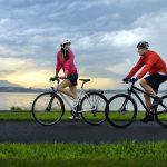 AXA crea el nuevo seguro de bicicleta BiciFlexible