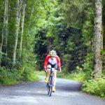 rose bikes 2015