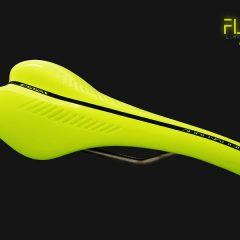 Sillines Essax Fluor Limited Edition