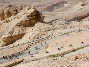 Tour de Arad 8