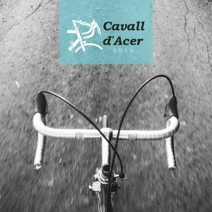 Cavall d'Acer