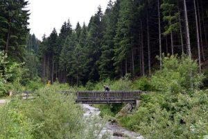 24-bosques-innsbruck