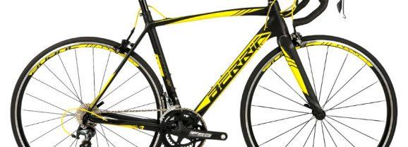 Berria Falcon Sport 9 Limited