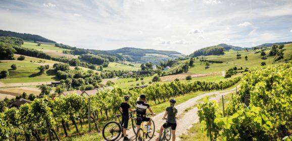 Ruta por Suiza con niños
