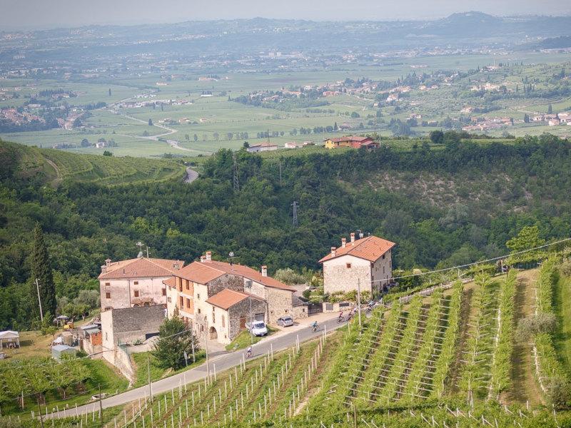 Alé La Merckx Granfondo Verona 2021